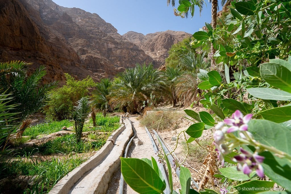 Oman with kids itinerary