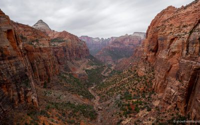 Zion National Park with Kids: Ultimate Guide (2020)